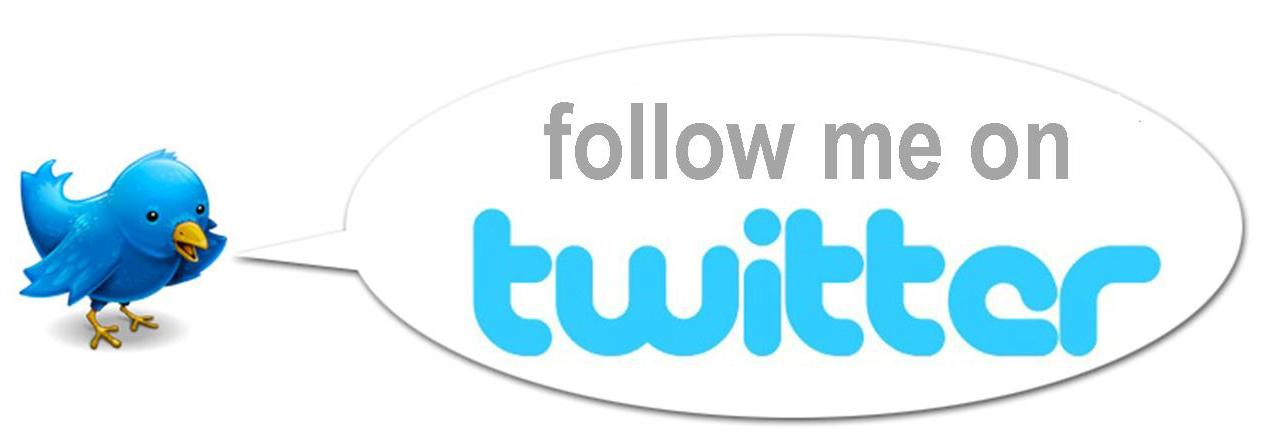 how to search and follow on twitter